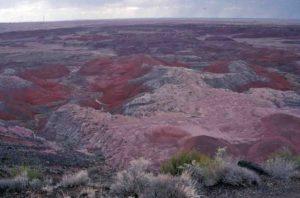 Photograph of landscape in Painted Desert, AZ