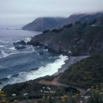 Photograph of coastal chaparral, s of Monterrey, CA