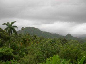 Photograph of Meseta de Maisi, Cuba
