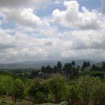Photograph of Sierra Cristal, Cuba