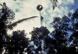Photograph of observation tower, Jatun Sacha, Ecuador