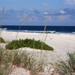 Photograph of coastal dunes, panhandle, FL