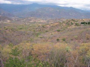 Photograph of landscape in El Progreso, Guatemala
