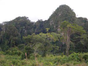 Photograph of landscape near Cuevas de Candelari, Guatemala