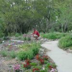 Photograph of Richard at Kanapaha Botanic Gardens