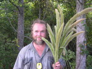 Photograph of Richard Abbott with Setaria magna.