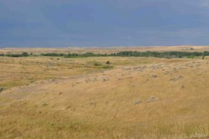 Photograph of Little Big Horn, MT