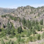 Photograph of landscape near Helena, MT