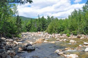 Photograph of Saco River, White Mountain National Forest, NH