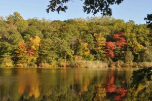 Photograph of Cranberry Lake, Cranberry Lake Preserve, NY