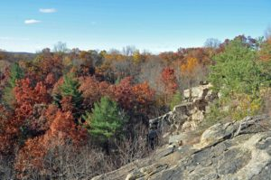 Photograph of landscape in ex-quarry, Cranberry Lake Preserve, NY