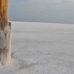 Photograph of Great Salt Plains, OK