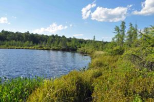 Photograph of Lehigh Pond, PA