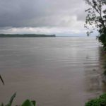 Photograph of Amazon River n of Iquitos, Peru