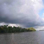 Photograph of Napo River, Peru