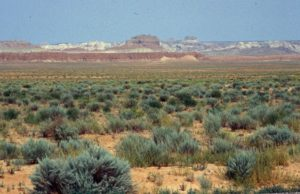 Photograph of landscape in southeast Utah
